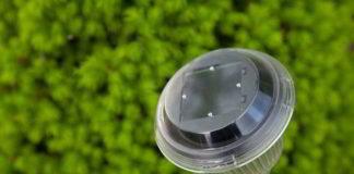 Jakie lampy ogrodowe kupić - Solarne kule, czy lampy stojące