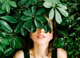 Efektywne uprawy roślin w domu